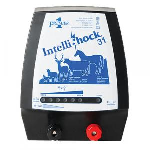 IntelliShock 31 Energizer
