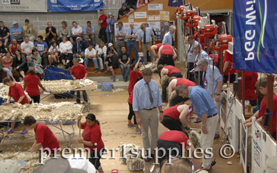 In front of the shearers at the Royal Christchurch show in New Zealand in 2008. Shearing machines and shearers are in a row on the right being studied carefully by judges. Skirting tables are on the left.