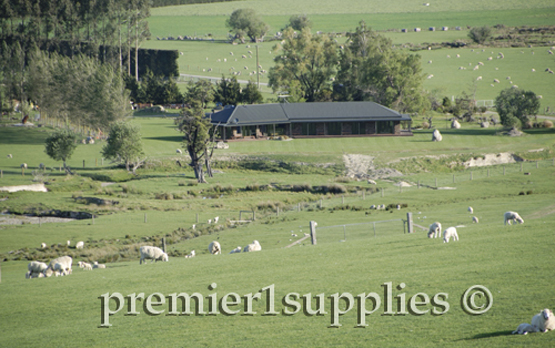 Looking down onto a sheep farmer's house and facilities in the Canterbury Plain of New Zealand. They don't need winter feed so no barns and less need for tractors and machinery. It struck me as being close to sheep farming paradise.