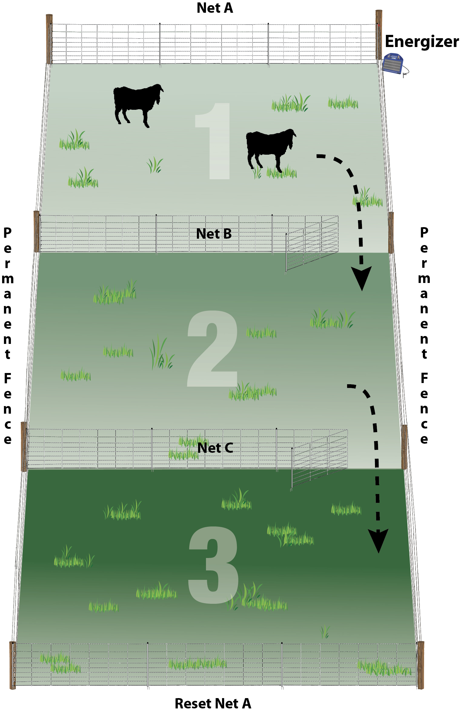 Practical Pasture Configurations for Rotational Grazing –