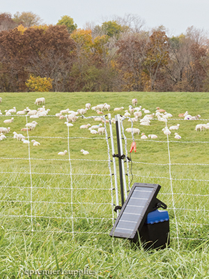 Solar IntelliShock Fence Charger